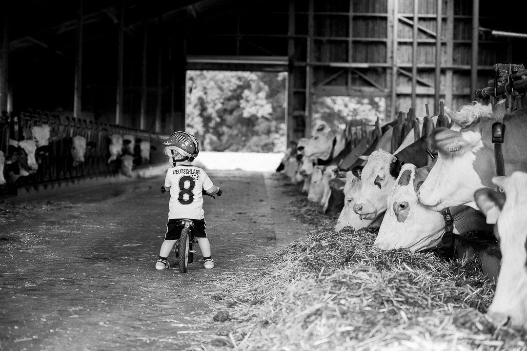 Junge auf Laufrad im Kuhstall