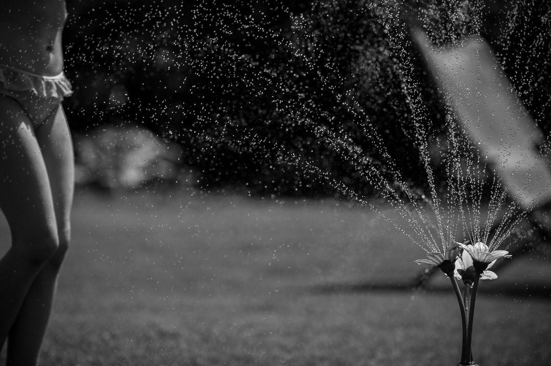 Wasserspiende Blume im Garten